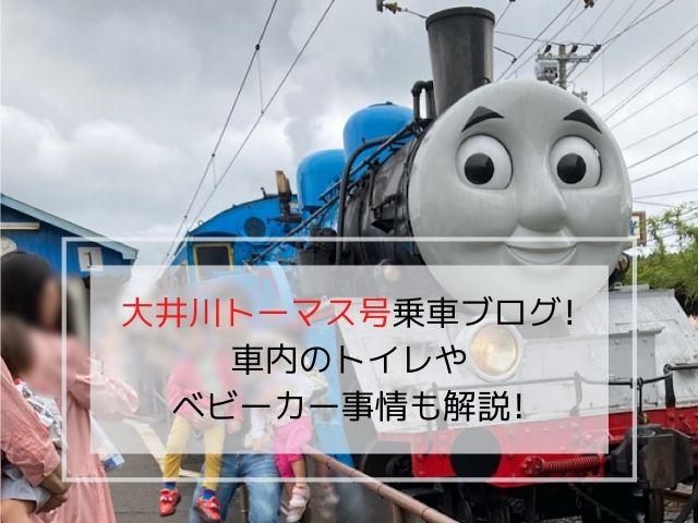大井川鉄道きかんしゃトーマス号乗車ブログの写真です。