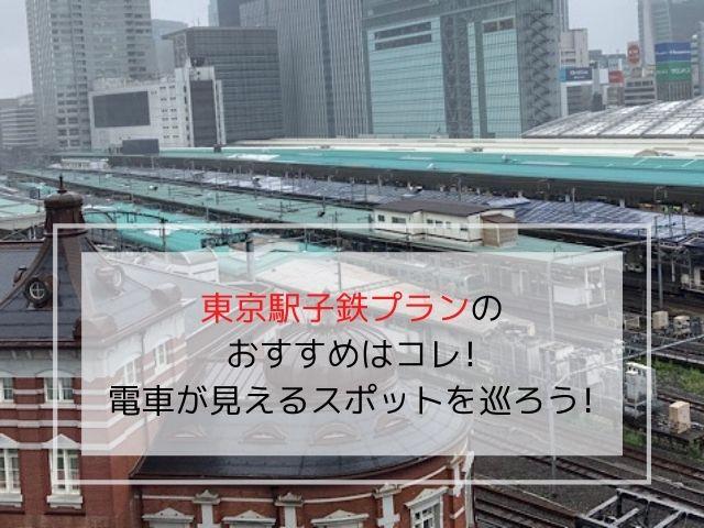 東京駅子鉄プランにおすすめの、電車が見えるスポットの写真です。