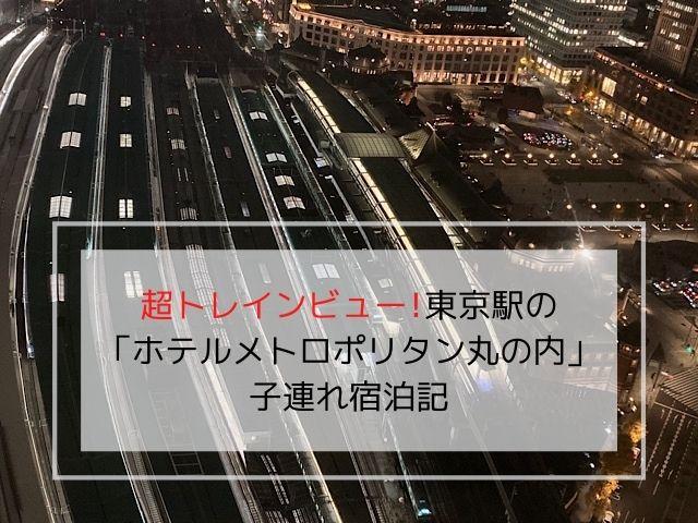 ホテルメトロポリタン丸の内のトレインビューの写真です。